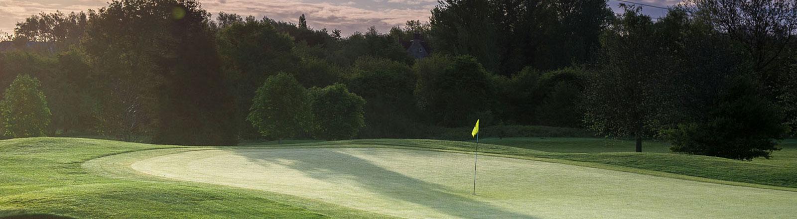 Thornbury golf course, green in low sun